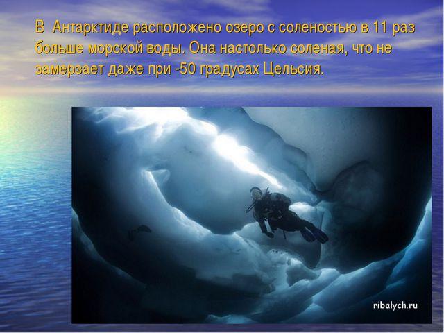 В Антарктиде расположено озеро с соленостью в 11 раз больше морской воды. Она...