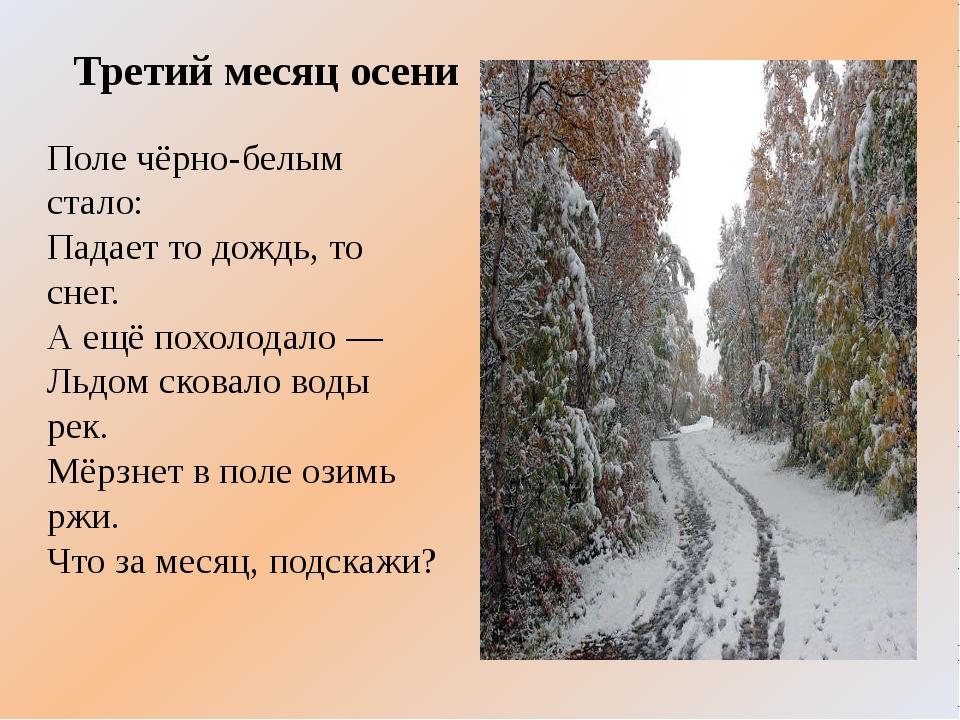 Третий месяц осени Поле чёрно-белым стало: Падает то дождь, то снег. А ещё по...