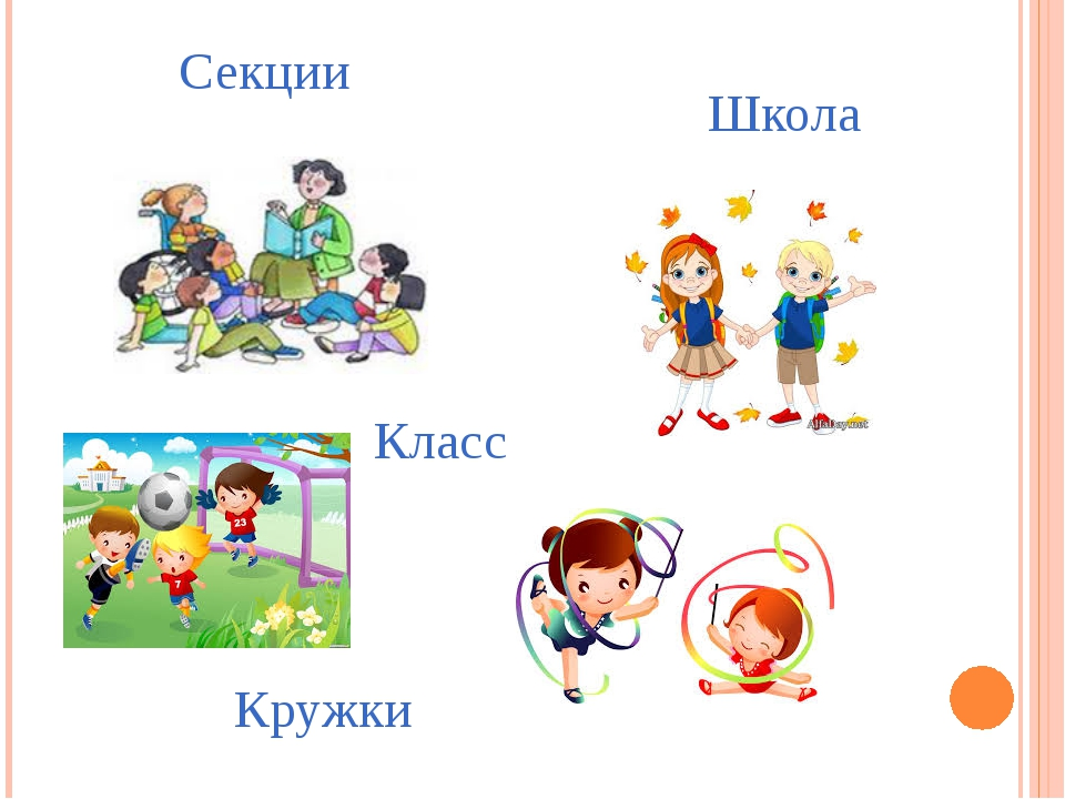 Школа Класс Кружки Секции