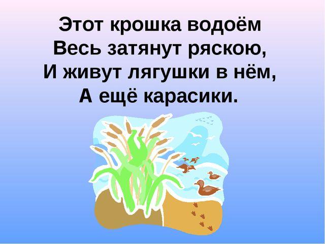 Этот крошка водоём Весь затянут ряскою, И живут лягушки в нём, А ещё карасики.