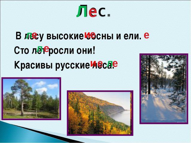 В лесу высокие сосны и ели. Сто лет росли они! Красивы русские леса. е е е е...