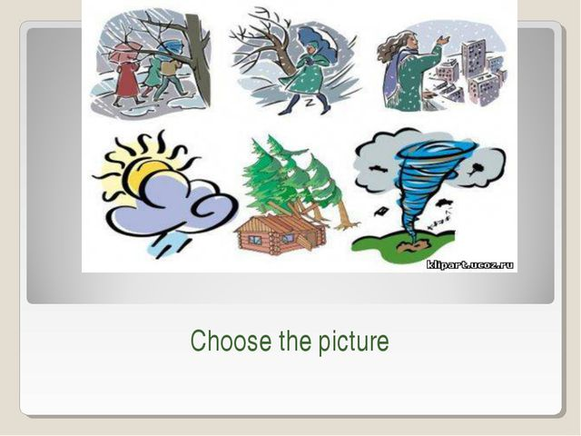 Choose the picture