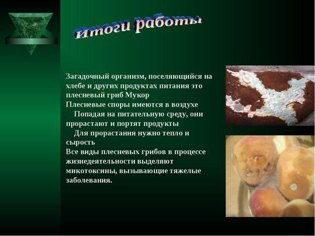 Загадочный организм, поселяющийся на хлебе и других продуктах питания это пл...