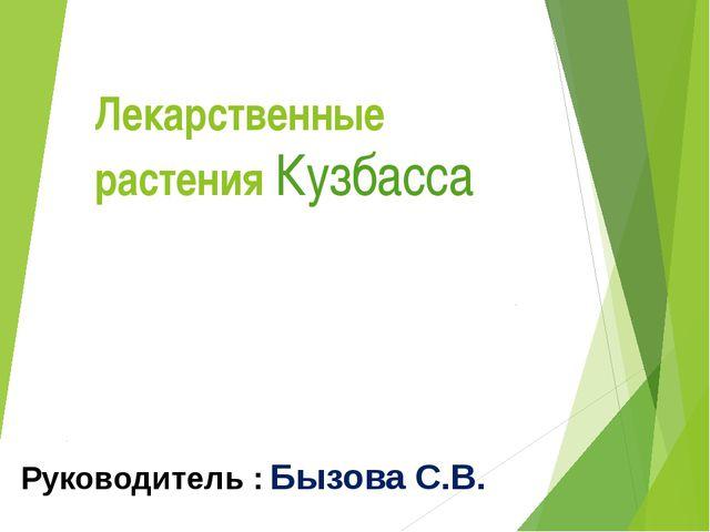 Лекарственные растения Кузбасса Руководитель : Бызова С.В.