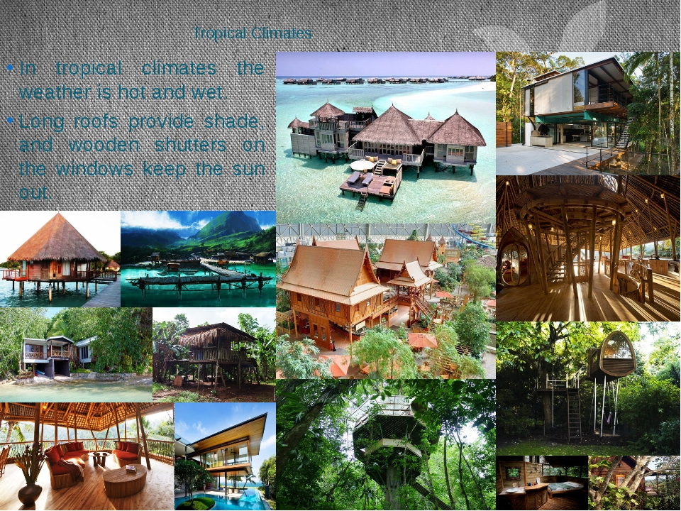 Tropical Climates In tropical climates the weather is hot and wet. Long roofs...