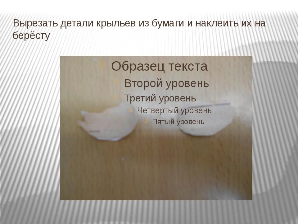 Вырезать детали крыльев из бумаги и наклеить их на берёсту
