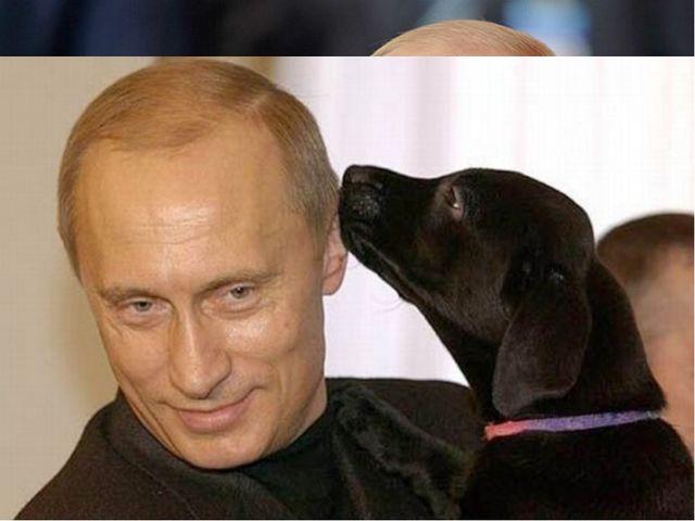 ПУТИН Владимир Владимирович президент Российской Федерации, российский госуд...