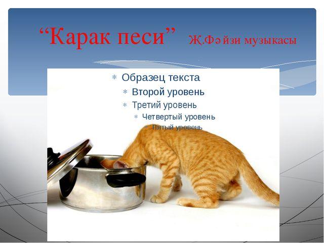 """""""Карак песи"""" Җ.Фәйзи музыкасы"""
