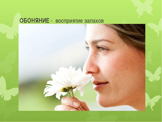 ОБОНЯНИЕ - восприятие запахов