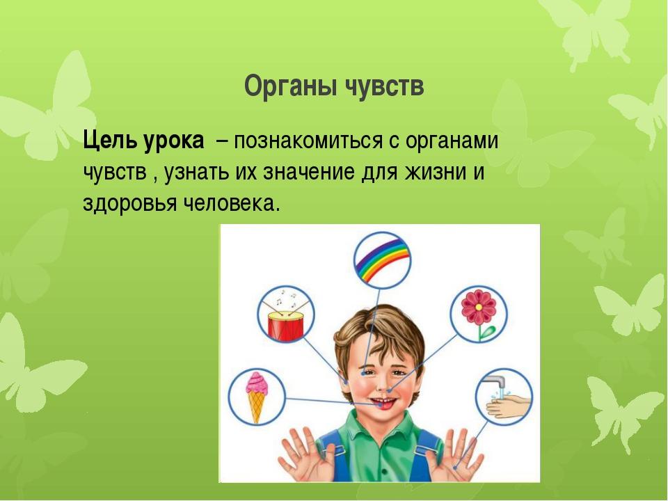 Органы чувств Цель урока – познакомиться с органами чувств , узнать их значен...
