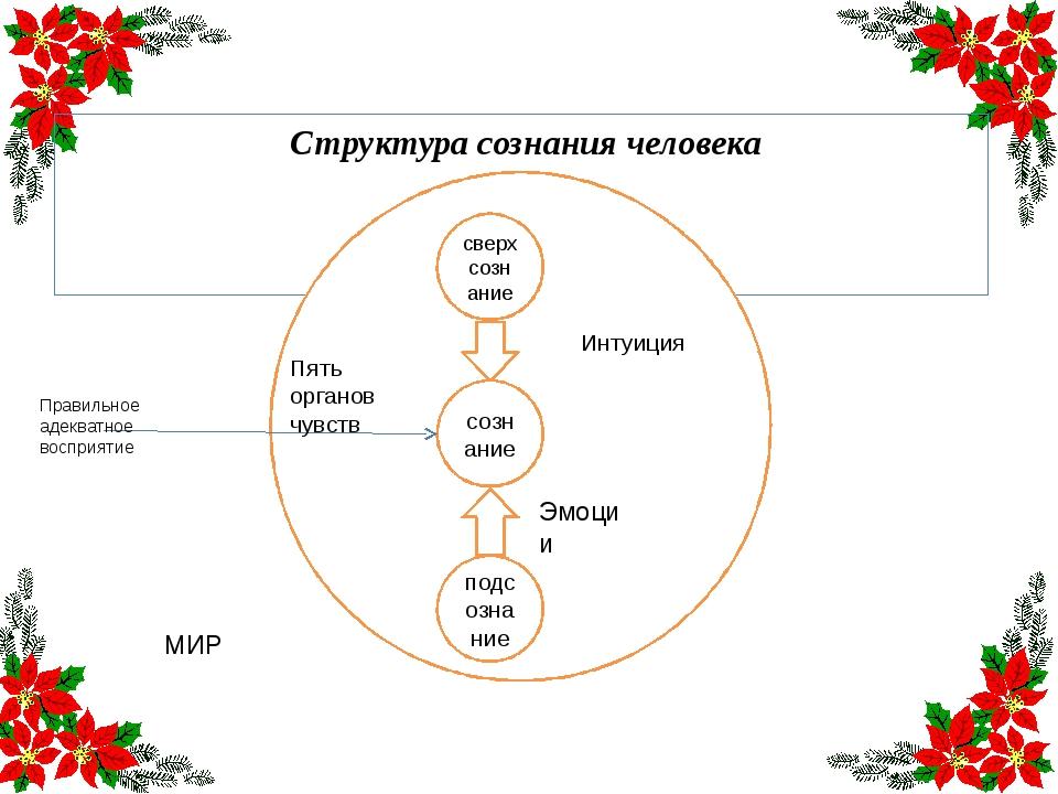 Структура сознания человека сверхсознание сознание подсознание Интуиция Эмоц...
