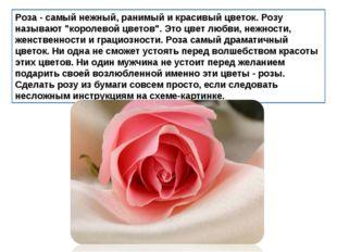 """Роза - самый нежный, ранимый и красивый цветок. Розу называют """"королевой цвет"""