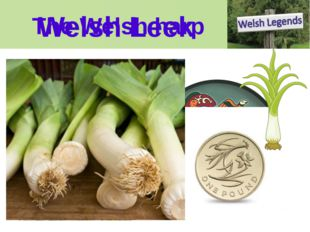 The Welsh harp Welsh Leek Welsh Harp We can make life a little complicated fo