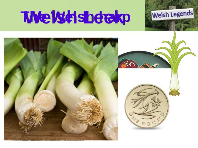 The Welsh harp Welsh Leek Welsh Harp We can make life a little complicated fo...