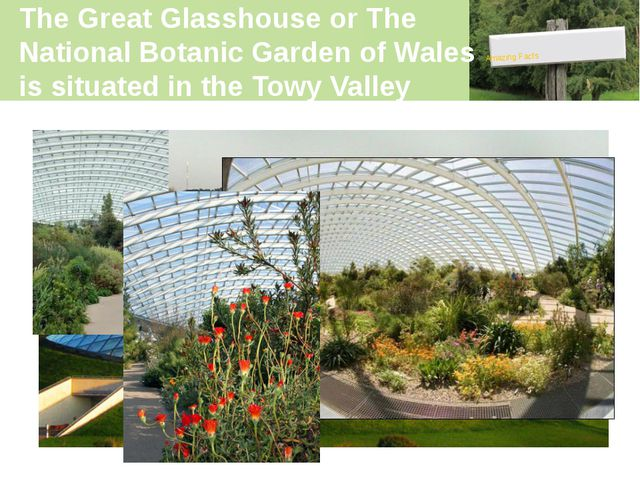 The Great Glasshouse or The National Botanic Garden of Wales is situated in t...