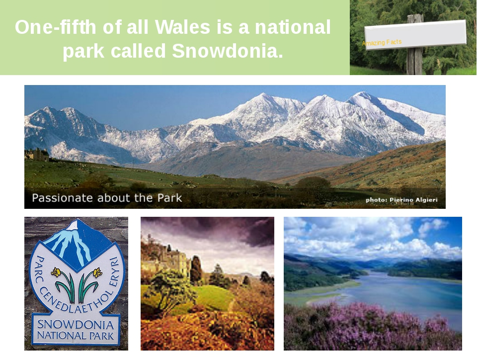 One-fifth of all Wales is a national park called Snowdonia. Amazing Facts Sno...