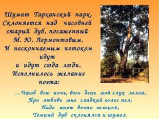 Шумит Тарханский парк, Склоняется над часовней старый дуб, посаженный М. Ю. Л