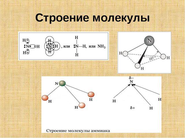Строение молекулы