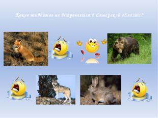 Какое животное не встречается в Самарской области?