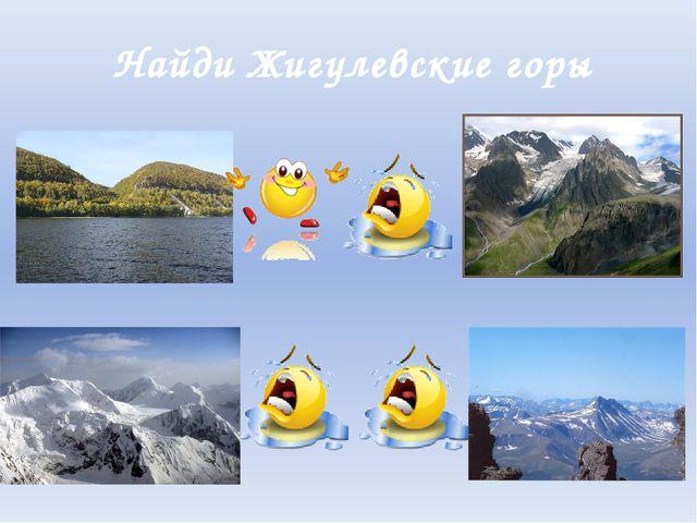 Найди Жигулевские горы