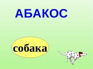 АБАКОС собака