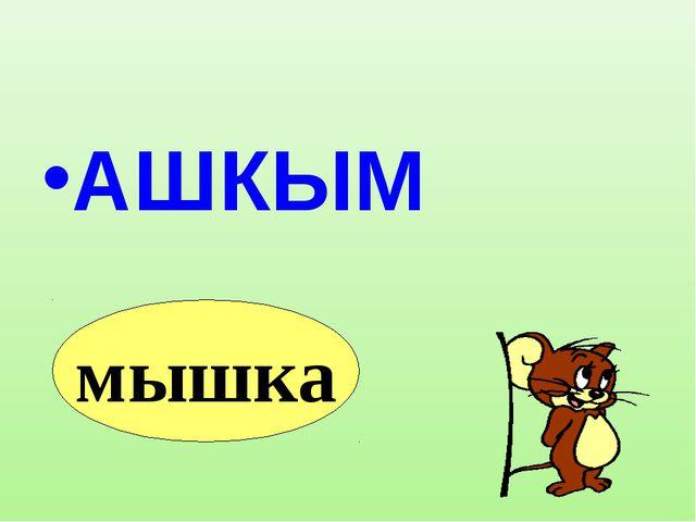 АШКЫМ мышка