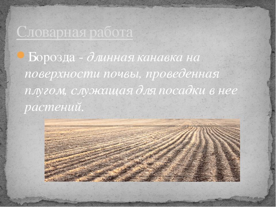 Борозда - длинная канавка на поверхности почвы, проведенная плугом, служащая...