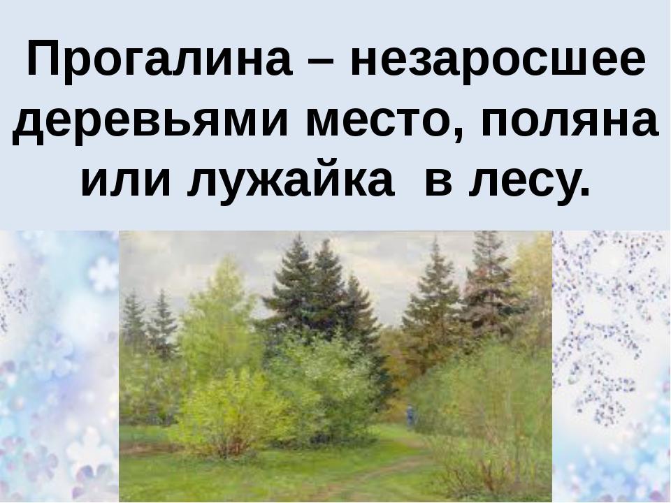 Прогалина – незаросшее деревьями место, поляна или лужайка в лесу.