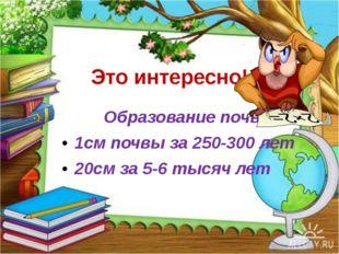 Это интересно! Образование почвы. 1см почвы за 250-300 лет 20см за 5-6 тысяч
