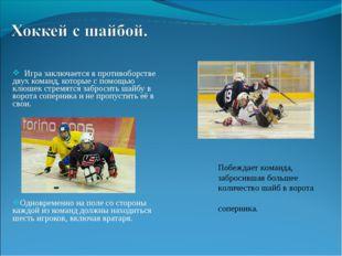 Игра заключается в противоборстве двух команд, которые с помощью клюшек стре