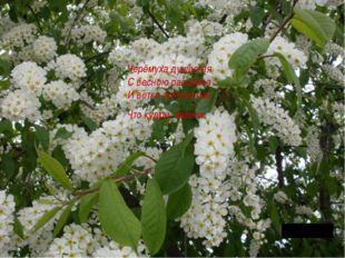 Черёмуха душистая С весною расцвела И ветки золотистые, Что кудри, завила.