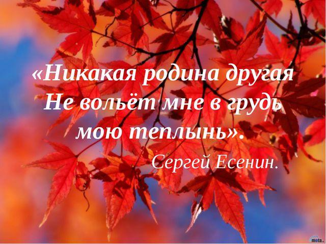 «Никакая родина другая Не вольёт мне в грудь мою теплынь». Сергей Есенин.