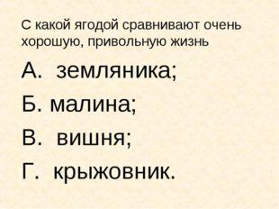 С какой ягодой сравнивают очень хорошую, привольную жизнь А. земляника; Б. ма