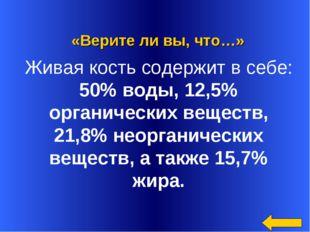 «Верите ли вы, что…» Живая кость содержит в себе: 50% воды, 12,5% органическ