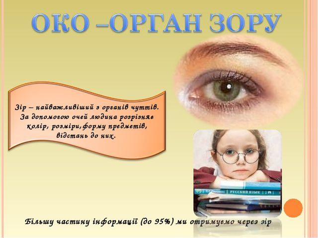 Більшу частину інформації (до 95%) ми отримуємо через зір