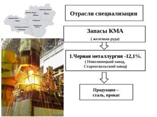 Отрасли специализации Запасы КМА ( железная руда) 1.Черная металлургия -12,1