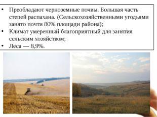 Преобладают черноземные почвы. Большая часть степей распахана. (Сельскохозяйс