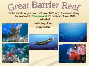 It's the world's largest coral reef (over 2000 km). It stretches along the ea