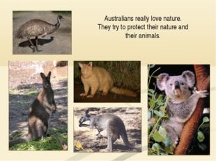 Australians really love nature. They try to protect their nature and their an