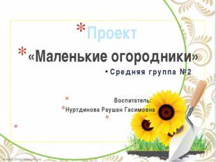 Проект «Маленькие огородники» Средняя группа №2 Воспитатель: Нуртдинова Рауша