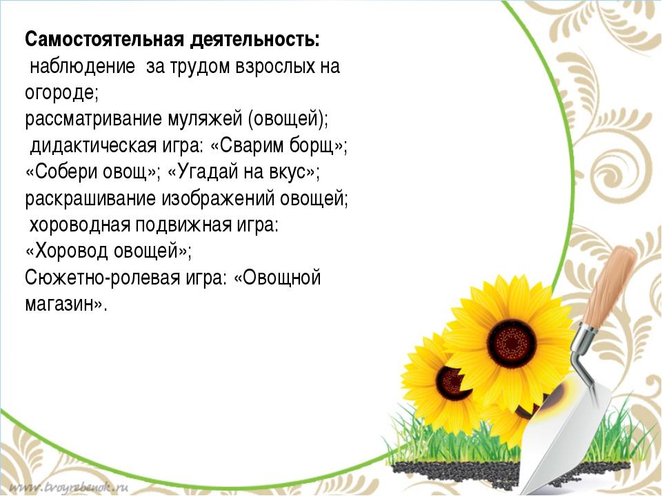 Самостоятельная деятельность: наблюдение за трудом взрослых на огороде; рассм...