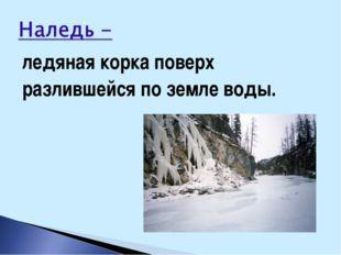ледяная корка поверх разлившейся по земле воды.