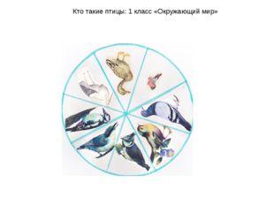 Кто такие птицы: 1 класс «Окружающий мир»