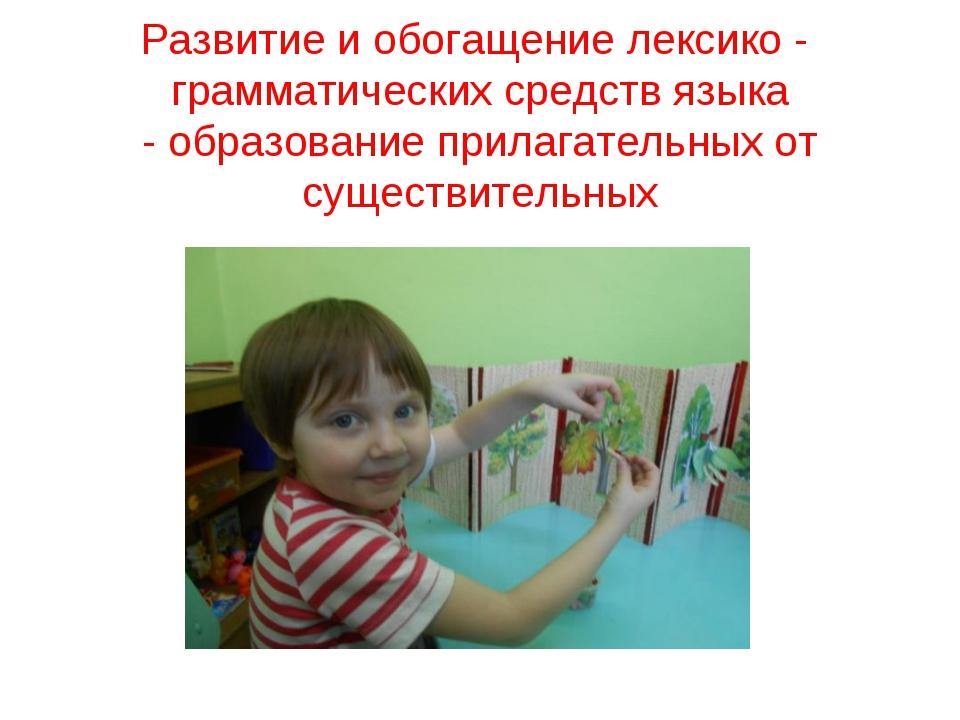 Развитие и обогащение лексико - грамматических средств языка - образование пр...