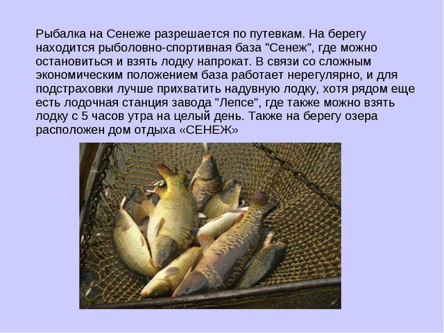 Рыбалка на Сенеже разрешается по путевкам. На берегу находится рыболовно-спор...