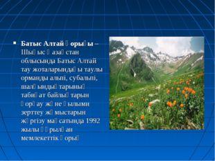 Батыс Алтай қорығы – Шығыс Қазақстан облысында Батыс Алтай тау жоталарындағы