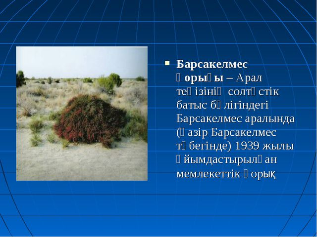 Барсакелмес қорығы – Арал теңізінің солтүстік батыс бөлігіндегі Барсакелмес а...