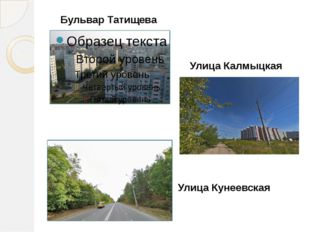 Бульвар Татищева Улица Калмыцкая Улица Кунеевская