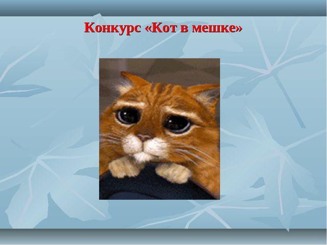 Конкурс «Кот в мешке»