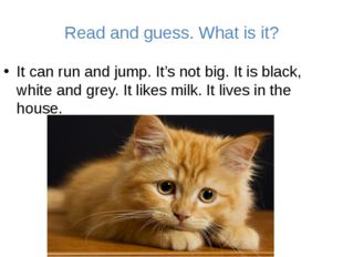 Read and guess. What is it? It can run and jump. It's not big. It is black, w